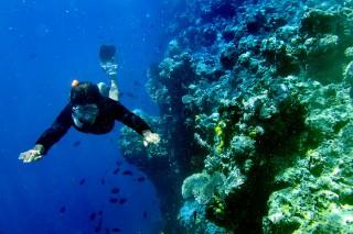 我国荣获最佳旅游景点美誉     引起全球潜水爱好者注目