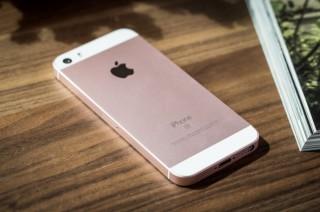 传苹果将明年第一季度发布新品 iPhoneSE2