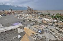 我国海洋塑料垃圾来源国   致力鼓励人民谨慎处理垃圾
