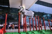 深知国内夺多项冠军冠军广肇江夏堂舞狮团创始人——黄柏