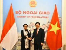 印越外长就两国专属经济区进行谈判