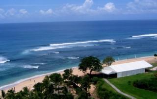 我国海洋生物魅力  :  国内开发拉威拉威海产养殖