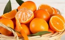 研究 : 柑橘类有助于保持眼睛健康