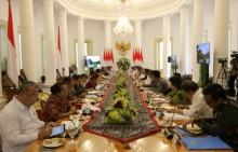 佐科威 :印尼经济有较强的承受力