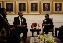 印尼 - 巴布亚新几内亚加强边境经济