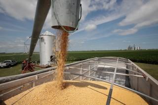 美国计划上调中国 2000 亿美元商品关税至 25%       美黄豆出口量因贸易战下降