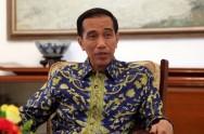 佐科威总统呼吁保持印尼盾的稳定