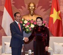印尼 - 越南议会合作有望加强两国关系