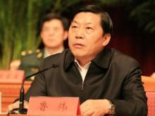 中国宣部原副部长鲁炜有罪受贿