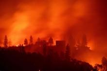 美加州火灾已致近 50 死