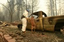 美加州林火已致 63 死   失踪人数增至 631 人