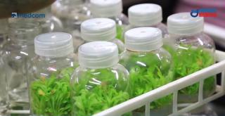 杭州种子银行迎来近 2000 种不同类种子