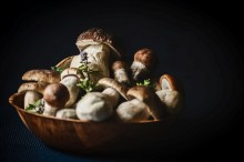 蘑菇对身体健康的益处