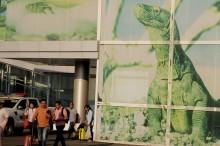 我国瞄准拉布安巴佐机场能吸引400万游客