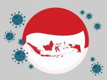 印尼13个省新冠肺炎治愈率超过世界